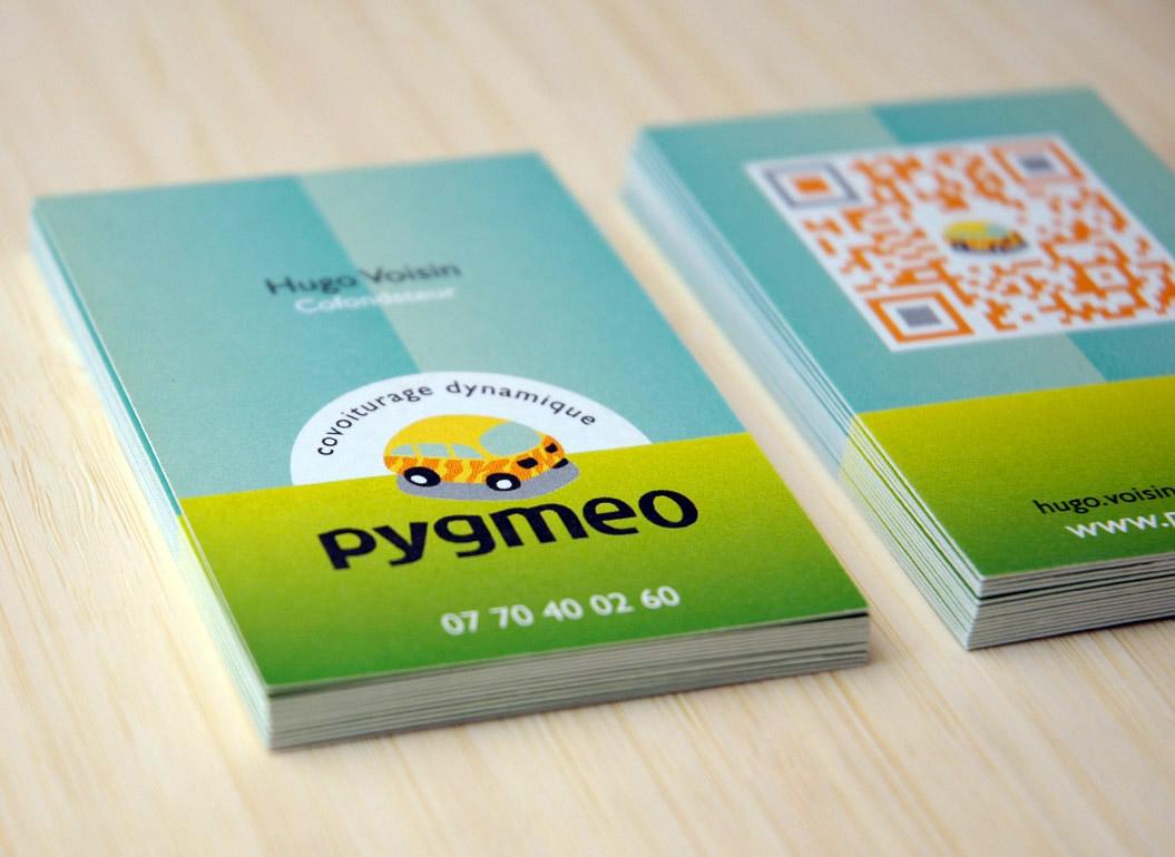 CV_Pygmeo-2